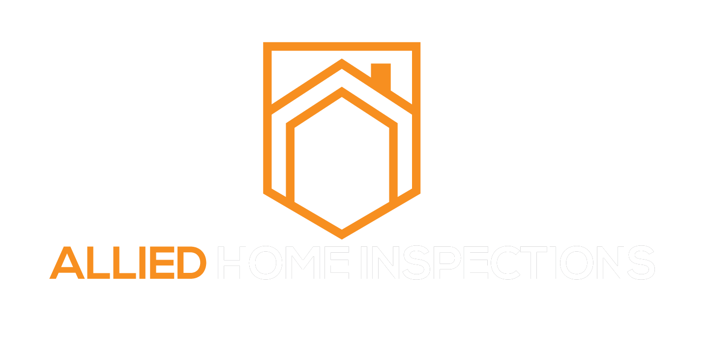 EZ Home Inspection Websites Style 2